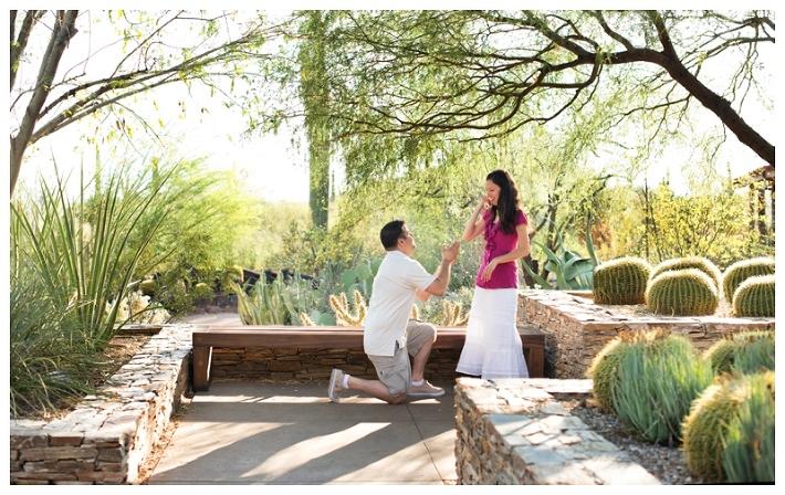 Desert Botanical Garden Proposal | Arizona Proposal Photographer